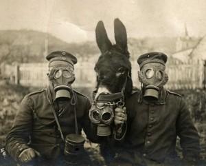 Soldati e mulo con maschere a gas