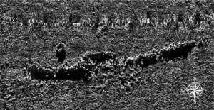 Immagine ottenuta con Scanner a scansione laterale