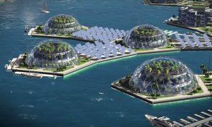 Serre e pannelli fotovoltaici