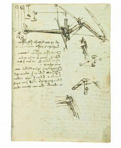 Articolazione dell'ala Codice del Volo Leonardo