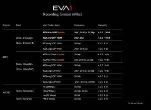 Formati EVA1