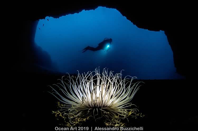 ShowTechies_2020_Fotografia subacquea concorso_grotta_Alessandro Buzzicheli