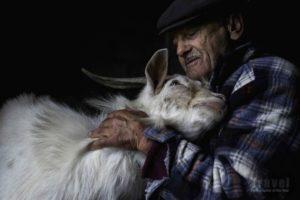 Pastore di 80 anni con la sua pecora di Jorge Bacelar, Portogallo