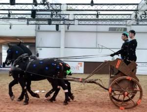 Mocap per cavalli e carri negli studi di Audiomotion