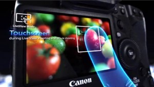 Display Touch-Screen