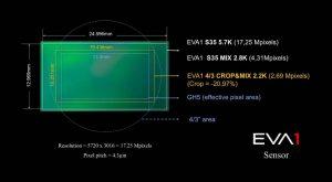 Sensore EVA1