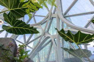 Amazon Sphere interno struttura