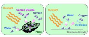 Fotocatalisi come fotosintesi clorofilliana