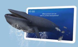 Balena VR di Ocean School