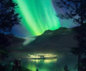 Svart Norvegia