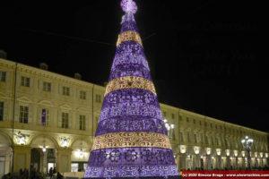 Luci ambra e lavender su albero di Natale